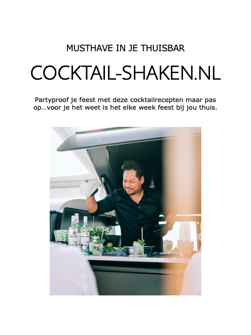 cocktail-shaken.nl ebook cover